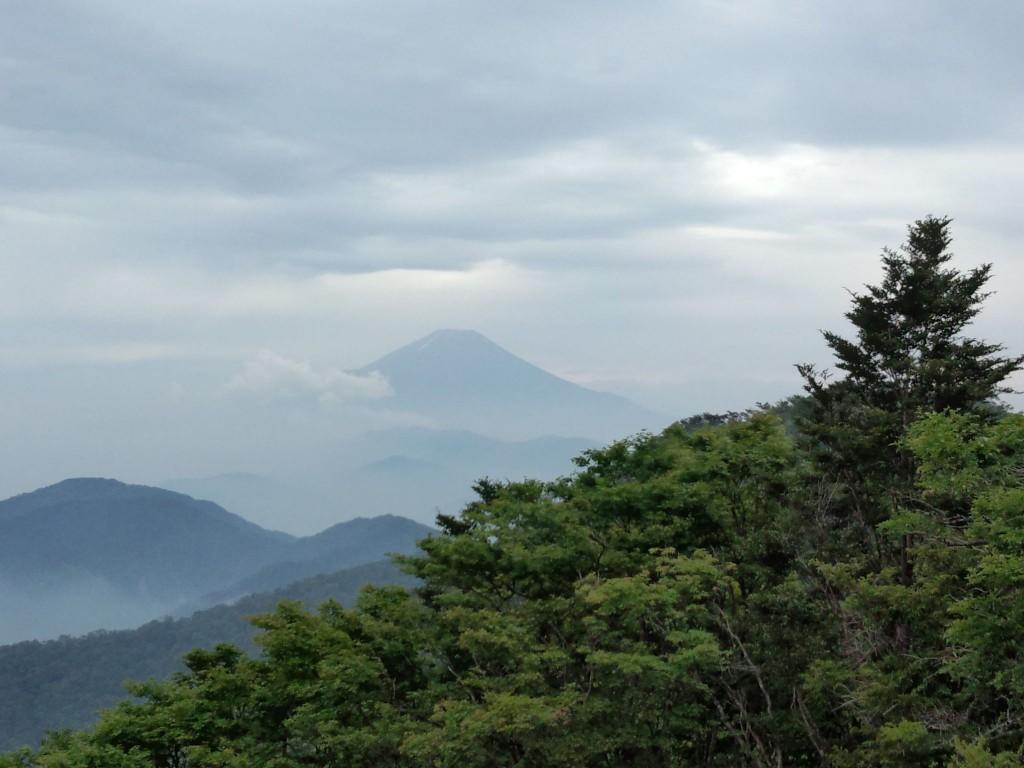 一瞬見えた富士山