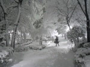 2/14夜の大雪