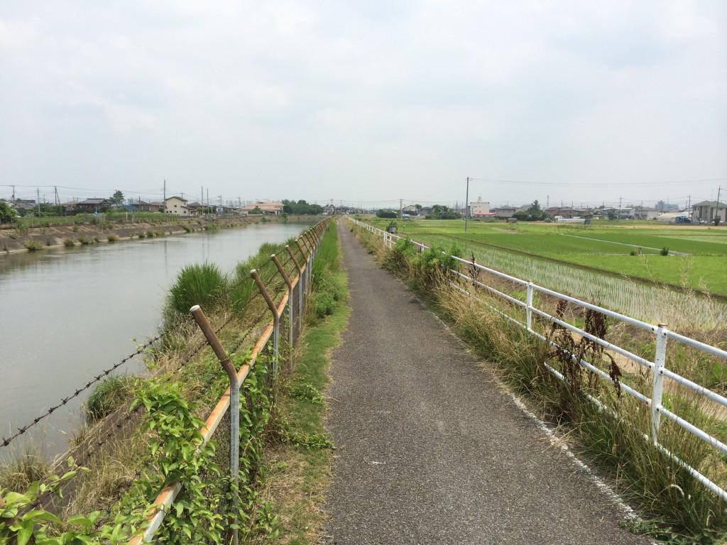 菖蒲町:見沼代用水