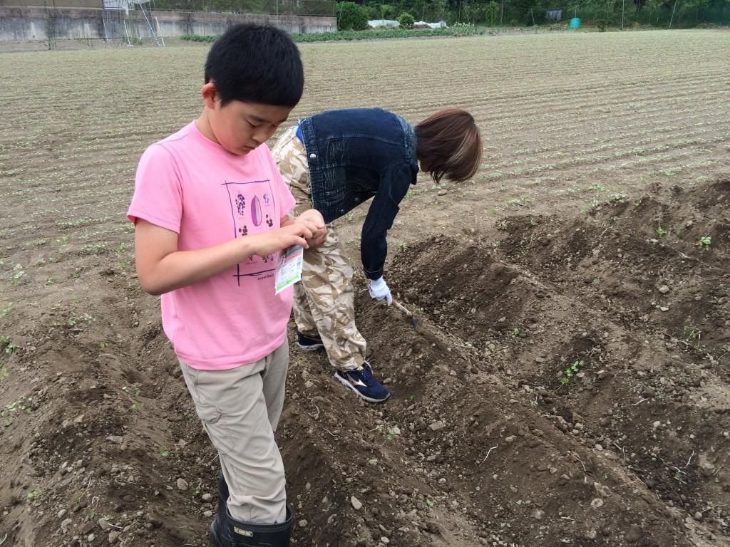 建国見学会:畑作業2