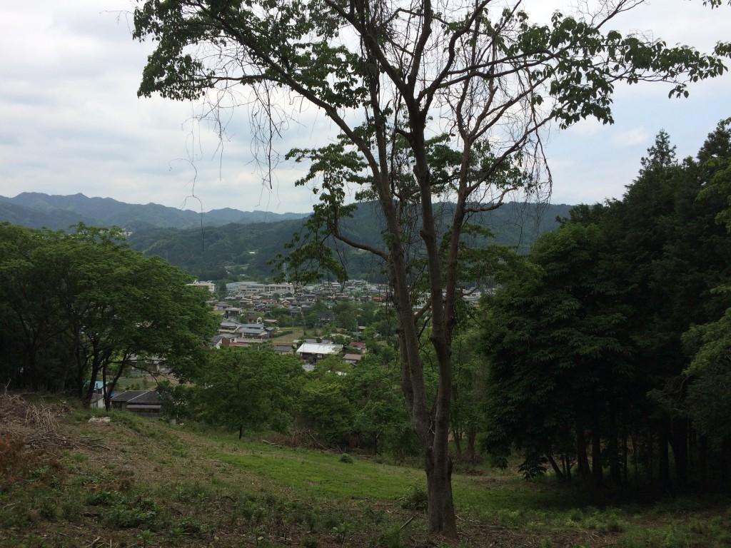 建国日記5:ターザン事故現場
